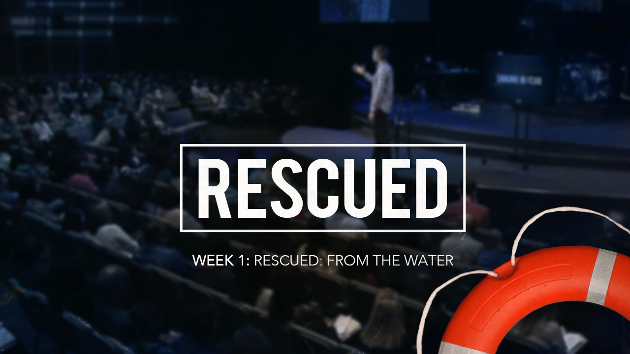 Rescued: From the Water